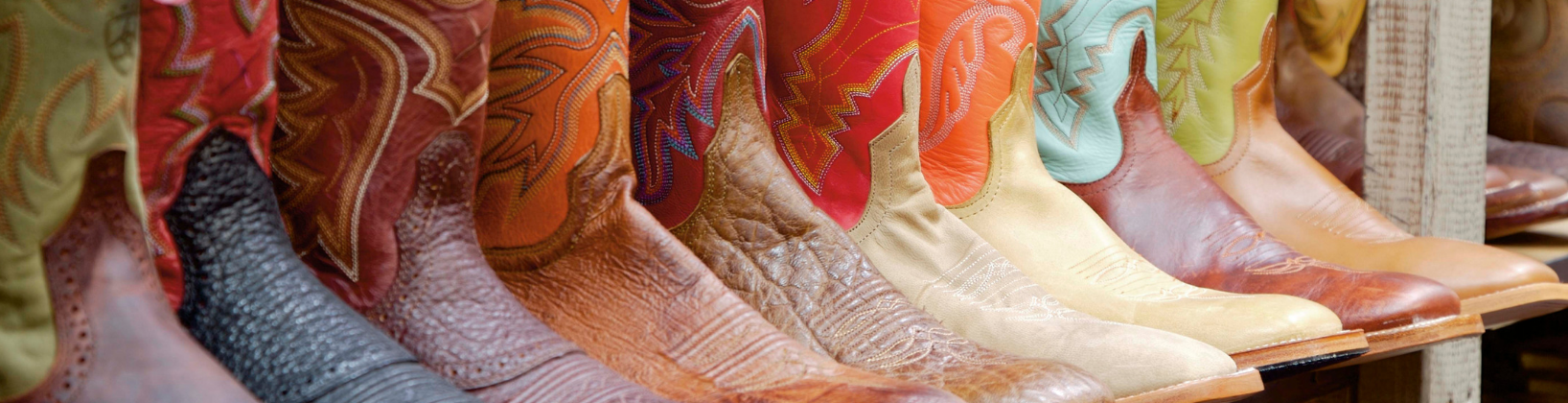 Colorful cowboy boots lined up on a shelf.