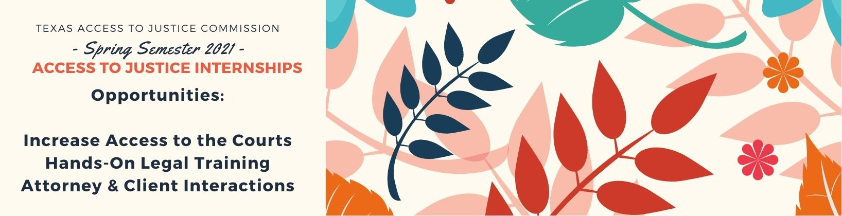 Spring 2021 Floral Motif Access to Justice Internship Program